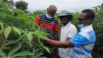 Expert wants industries to invest in seed production