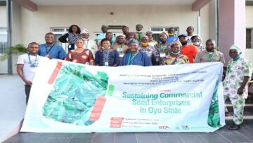 Seed producers develop one-year plan to strengthen cassava seed enterprises