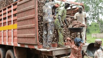 ACAI bundling AKILIMO with agro-services through strategic partnerships for sustainability